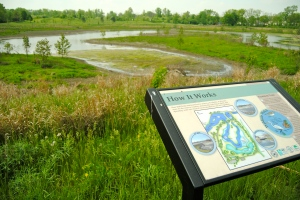 The stormwater utility helped pay for this flood control wetland park in Ann Arbor, MI.