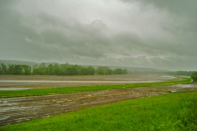 It rained nonstop the weekend we were in Vermont, and fields were puddling up.