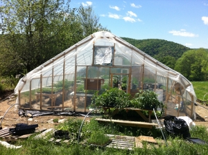The new greenhouse on the hill at Evening Song Farm.