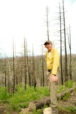 Bill Armstrong, a fuels specialist with the Forest Service, stands in the burn scar of the Las Conchas fire in the Santa Fe National Forest.