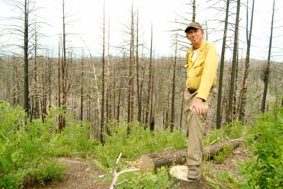 Bill Armstrong surveys the charred forest in Santa Fe, NM.