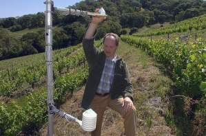 Chris Howell of Cain Vineyard & Winery. | Photo: Kristopher Skinner, Contra Costa Times