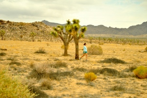 Allie Goldstein walking among the Joshua trees.