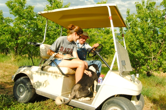 Allie Goldstein and Glenn Austin pet the Austin family dog while ridin' around the orchard via golf cart