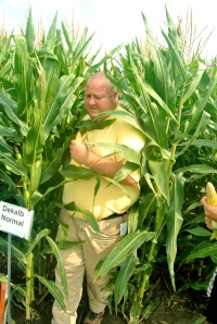 Chandler Mazour of Monsanto picks a good ear of corn from the research field.