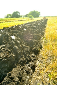 Tilling releases soil moisture and carbon emissions into the atmosphere.