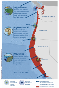 The Pacific Northwest is an acidification hotspot.