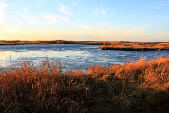 Marsh at sunset. | Photo (c) Whitney Flanagan, The Conservation Fund