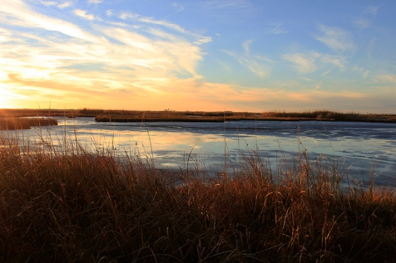 Sunset over the marsh at Blackwater National Wildlife Refuge in Dorchester County, which is highly vulnerable to sea level rise. | Photo: (c) Whitney Flanagan, The Conservation Fund
